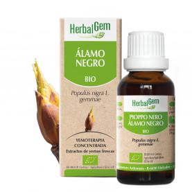 ÁLAMO NEGRO - 15 ml | Herbalgem