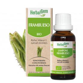 FRAMBUESO - 15 ml | Herbalgem