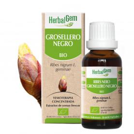 GROSELLERO NEGRO - 15 ml | Herbalgem