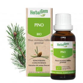 PINO - 50 ml | Herbalgem