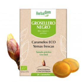 GROSELLERO NEGRO - 24 caramelos | Herbalgem