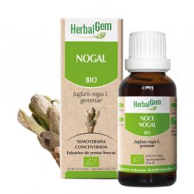 NOGAL - 50 ml | Herbalgem