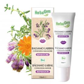 BÁLSAMO LABIAL CONSUELDA MAYOR - 10 ml | Herbalgem